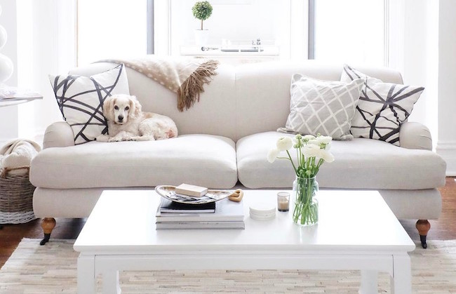 Pleasing The Best Pet Friendly Sofas The Everygirl Dailytribune Chair Design For Home Dailytribuneorg