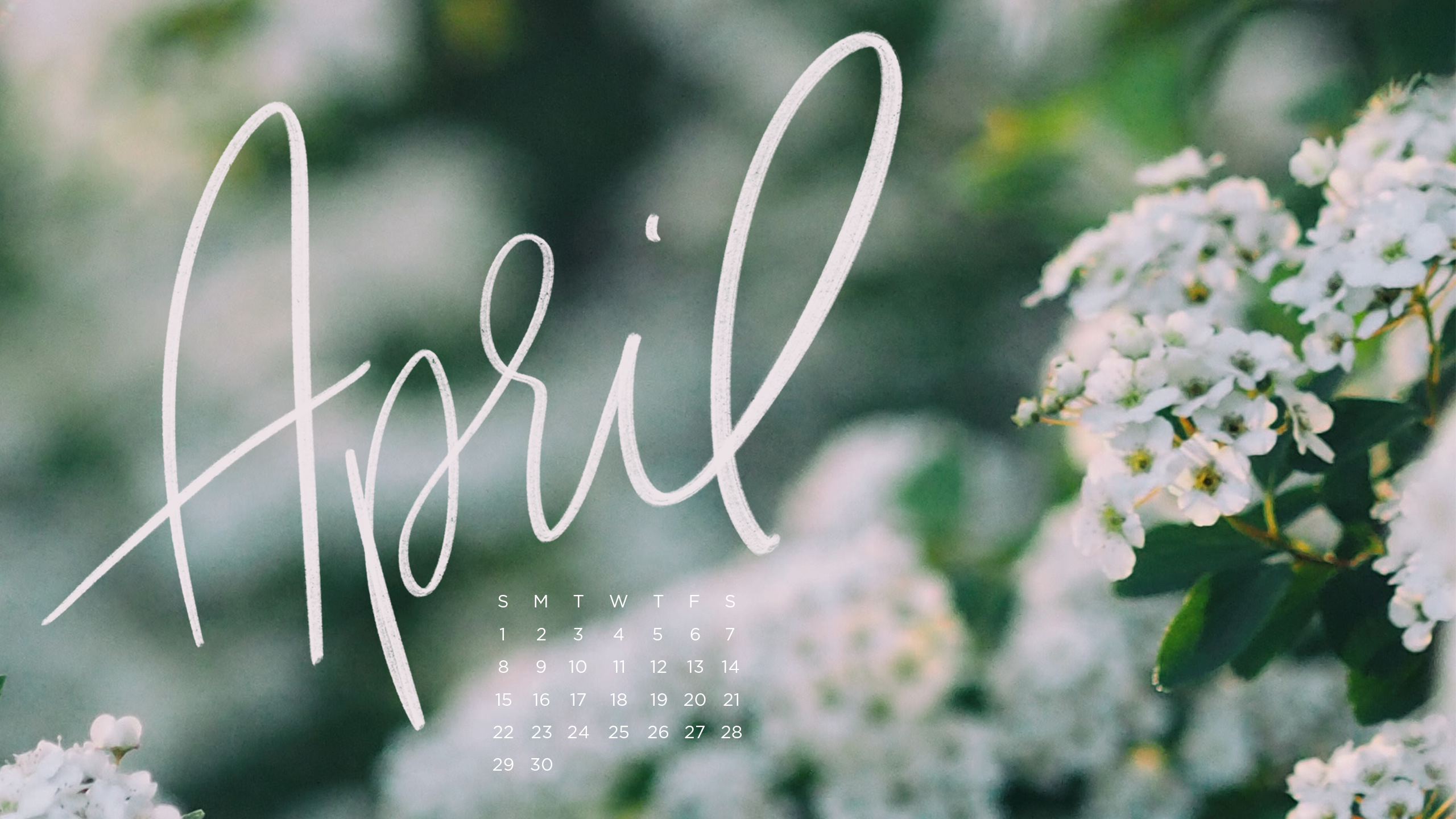 Free Downloadable Tech Backgrounds For April The Everygirl