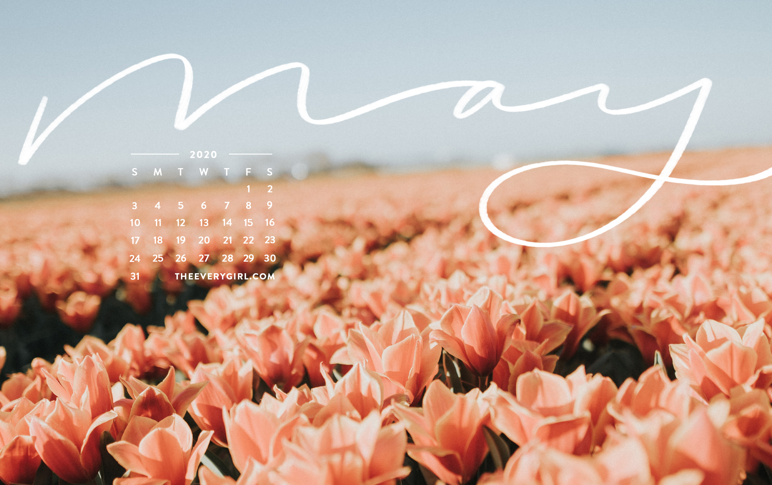 Free Downloadable Tech Backgrounds For May 2020 The Everygirl