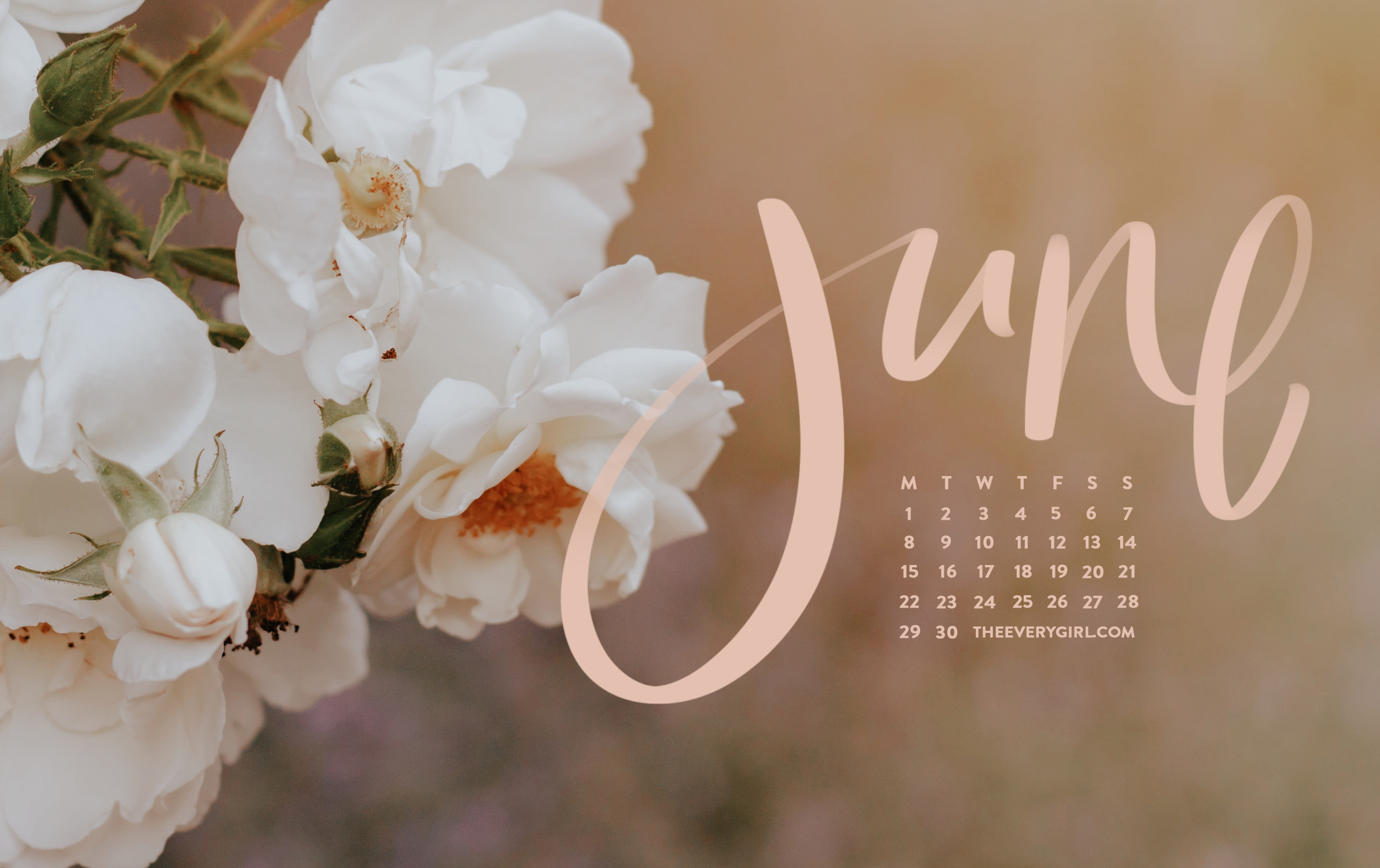 Free Downloadable Tech Backgrounds For June 2020 The Everygirl