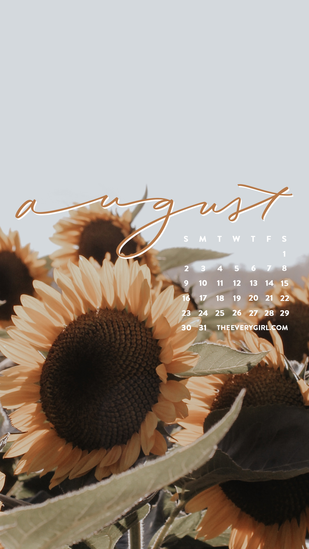 Free Downloadable Tech Backgrounds For August 2020 The Everygirl