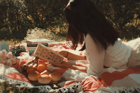 practicing self care by reading a book on a picnic blanket
